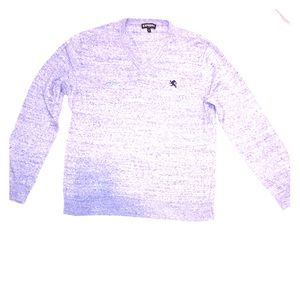 Express V-Neck Sweater - Super Soft